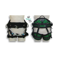 Buckingham ErgoLite Harness